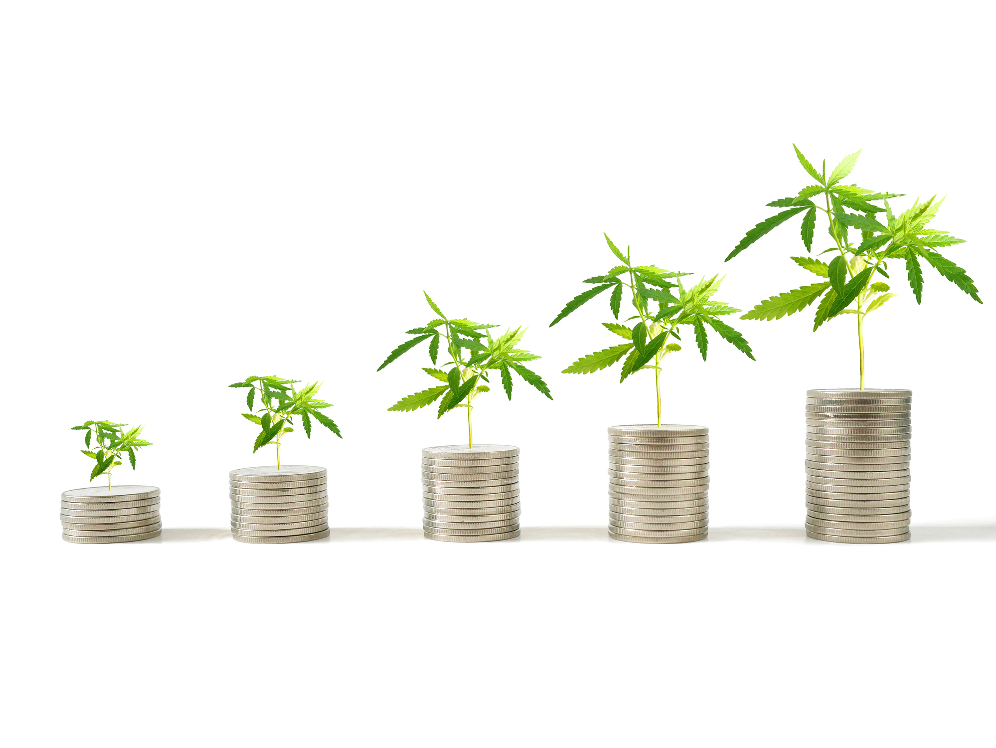 The Cannabis Industry is Growing and So Are the Fines: Learn How You Can Upgrade & Safeguard Your Business with Identity Verification