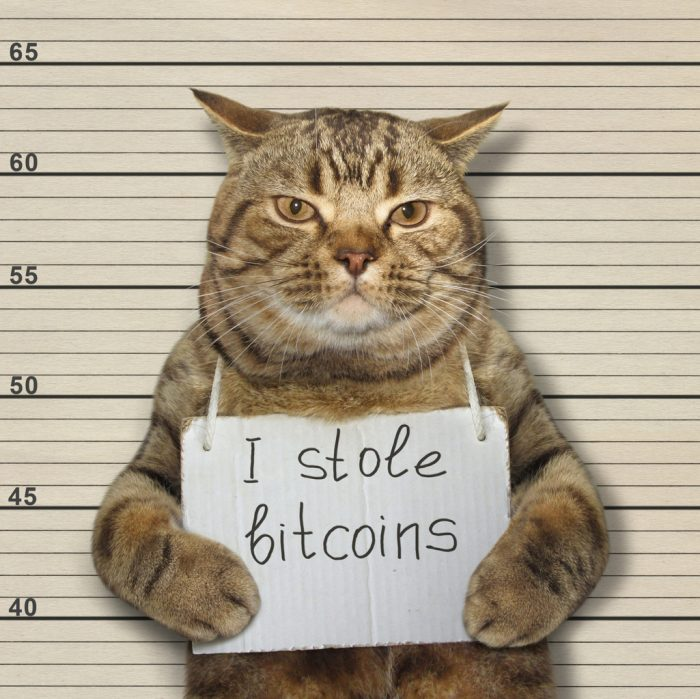 Cat Got your Bitcoin? With Increasing Popularity Comes Increasing Regulations for Crypto: 6AMLD, FATF Travel Act & More
